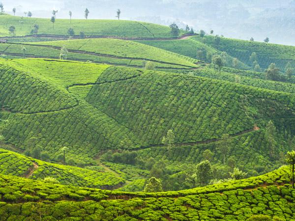 Bangalore Luxury Travel - Best of Sikkim and Bhutan Indian Tour - Luxury Tours
