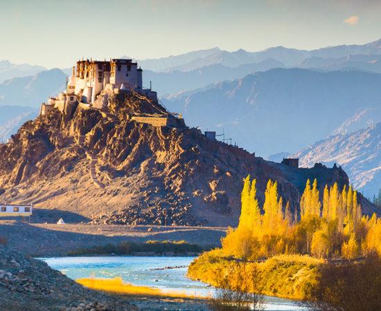 Bangalore Luxury Travel - Ladakh Monks, Lakes and Yaks Indian Tour - Luxury Tours